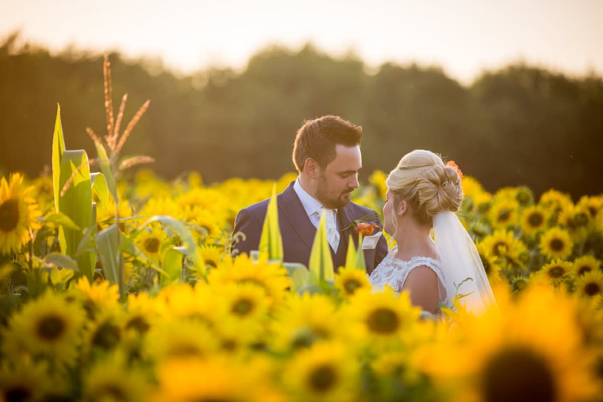 bride and groom in sunflower field
