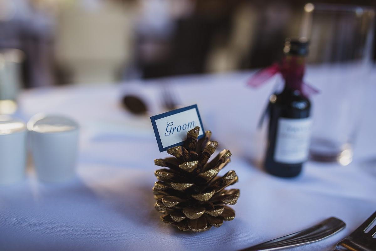 pine cone name setting